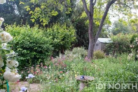 Garden 05-21.jpg