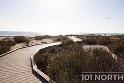 Beach 20 (102 of 38).jpg
