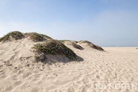 Beach 13-135.jpg