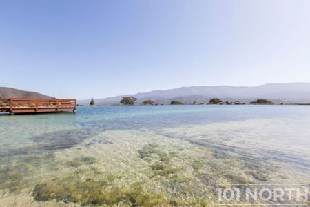 Pond 04-9.jpg