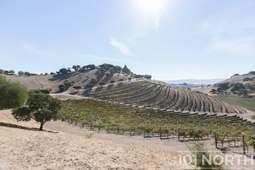 Winery 22-7.jpg