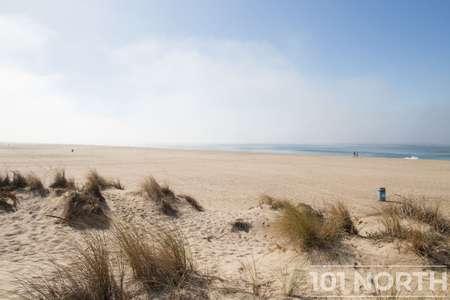 Beach 13-104.jpg