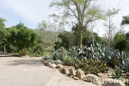 Garden 03-383.jpg