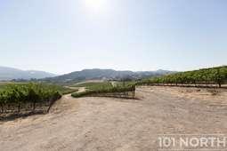 Winery 19-16.jpg