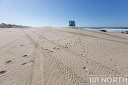 Beach 15-36.jpg