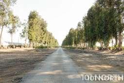 Road 16-304.jpg