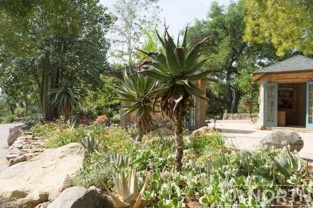 Garden 03-385.jpg