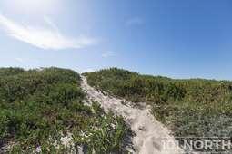 Beach 14-5.jpg