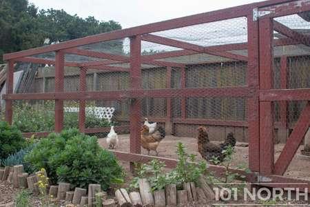 Garden 05-10.jpg