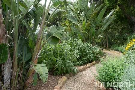 Garden 03-100.jpg