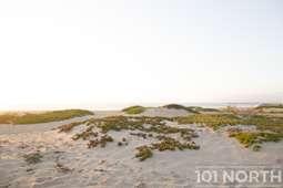 Beach 19-115.jpg