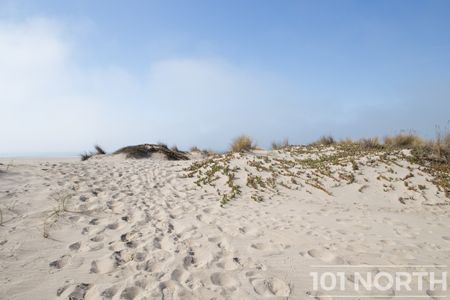 Beach 13-114.jpg