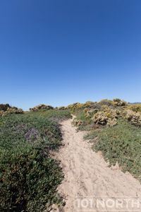 Beach 16-3.jpg