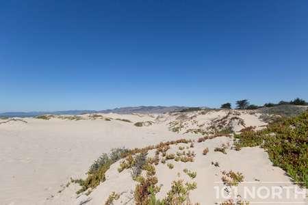 Beach 16-36.jpg