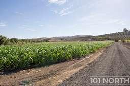 Ranch 16-20.jpg