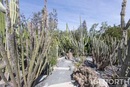 Garden 02-39.jpg