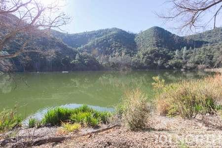 Pond 03-6.jpg