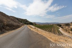 Winery 07-102.jpg