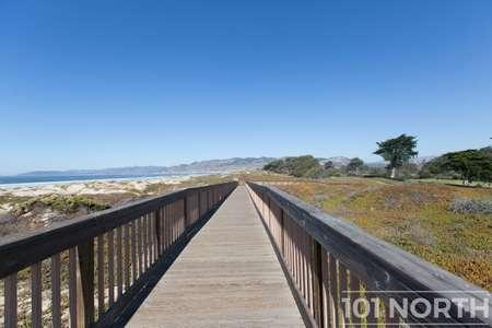 Beach 16-24.jpg