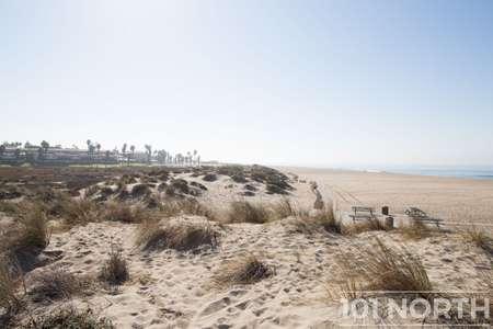 Beach 12-141.jpg