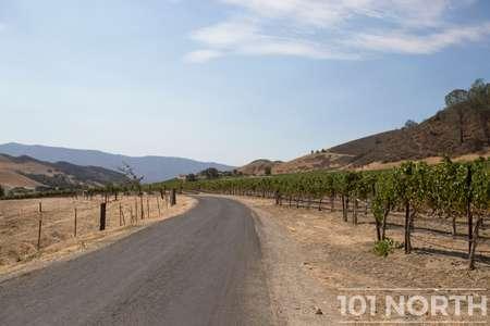 Winery 07-64.jpg