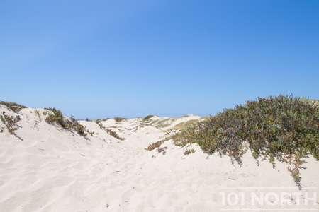 Beach 13-143.jpg
