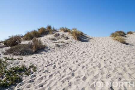 Beach 12-154.jpg