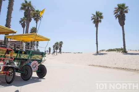 Beach 13-140.jpg