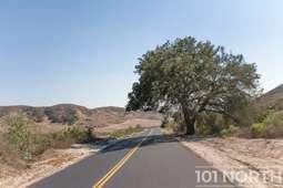 Road 02-9.jpg