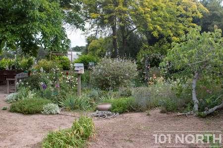 Garden 05-32.jpg
