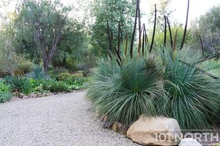 Garden 03-130.jpg