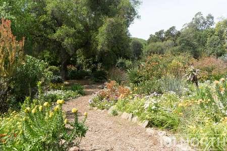 Garden 03-250.jpg