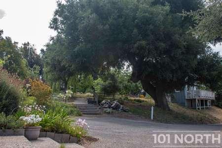 Garden 05-52.jpg