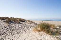 Beach 12-100.jpg