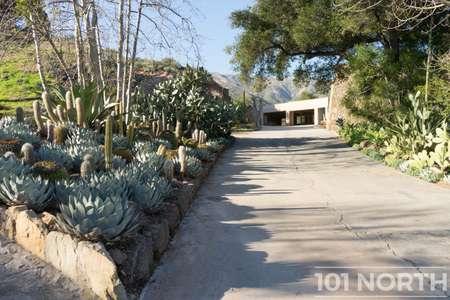 Garden 03-341.jpg