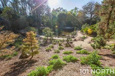 Garden 02-317.jpg