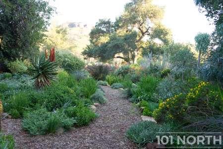 Garden 03-230.jpg