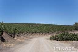 Winery 05-29.jpg