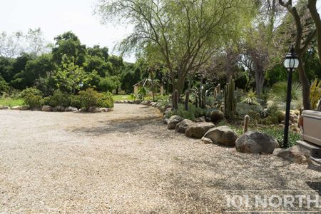 Garden 03-253.jpg