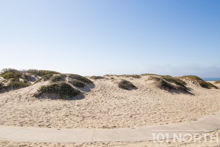 Beach 12-156.jpg