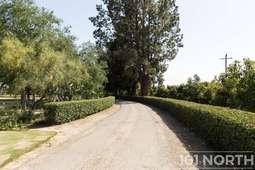 Road 16_11.jpg