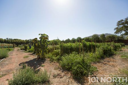 Winery 05-25.jpg