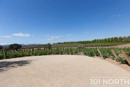 Winery 21-36.jpg