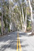 Road 14-7.jpg