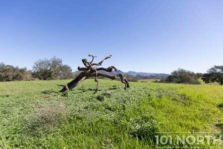 Ranch-Farm 06-84.jpg
