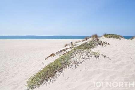 Beach 13-152.jpg