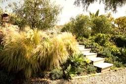 Garden 07-29.jpg