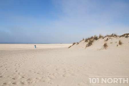 Beach 13-122.jpg