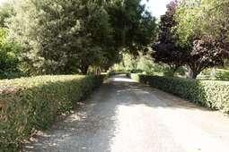 Road 16_49.jpg