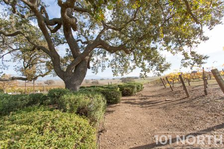 Winery 13-31.jpg